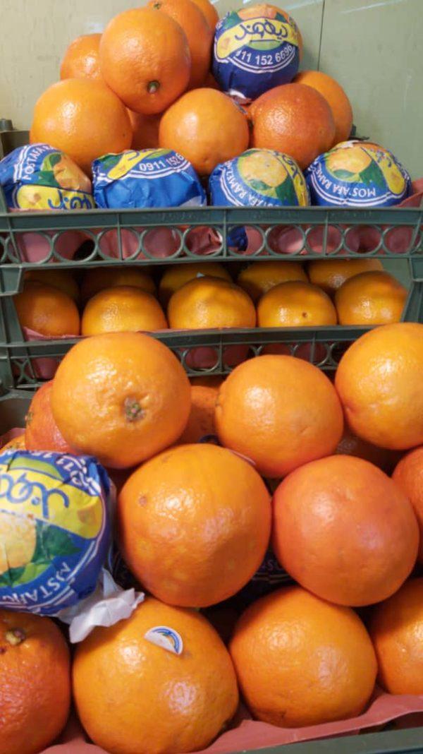 پرتقال پیوندی - یک کیلوگرم